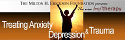brief therapy conference 2014