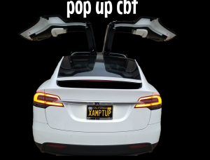 photo of our pop up cbt logo which is a tesla model x with falcon doors fully open