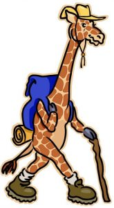 image of giraffe hiking with walking stick, backpack and hat