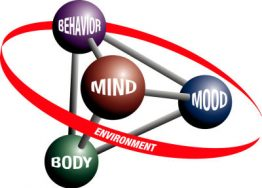 copyrighted 5 part model logo showing mind mood body behavior and environment
